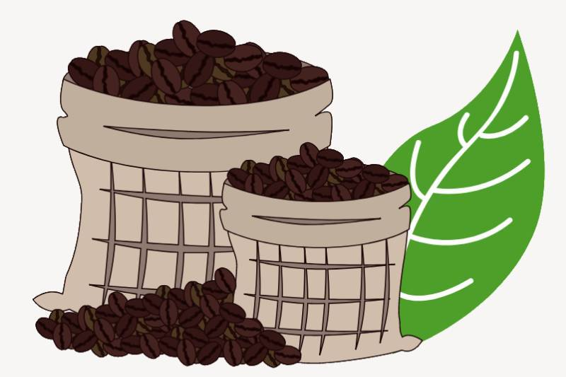 Coffee Sustainability: Starbucks ups sustainability. Coffee waste for restoring forests.
